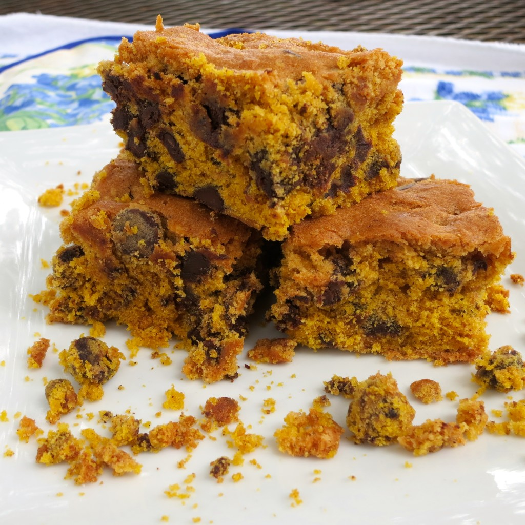 Pumpkin Chocolate Chip Cake Bars